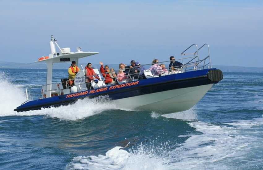 Enjoy an exhilarating boat trip off the coastline searching for seals and dolphins.