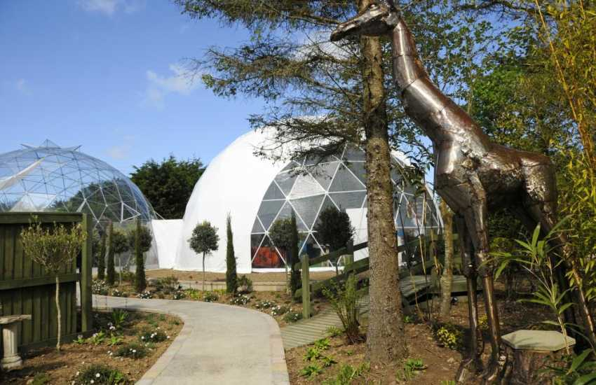 Hilton Court Gardens & Crafts - unwind in the Tropical Solar Dome, stroll around the lakes, gardens and woodland then enjoy a mouth watering cream tea in the cafe!