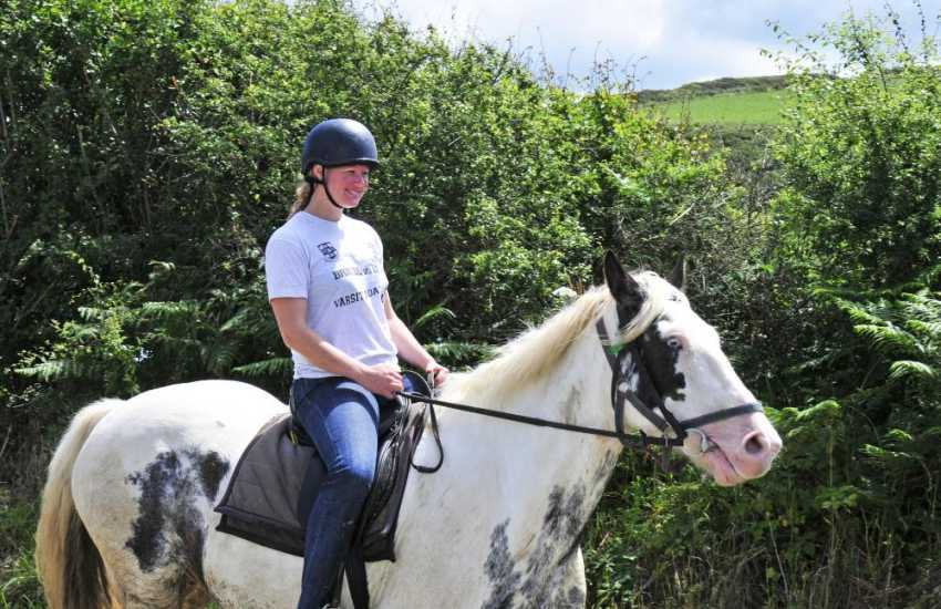 Trekking up in the Preseli Hills - Crosswell Riding Stables caters for all levels of experience and offer 'Own a Pony' days, pub rides and also trail rides over the Preseli hills, the Gwaun Valley and Newport beach