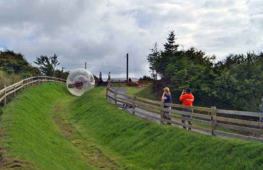 Try Zorbing at Nolton Stables - rolling down a hill in an inflatable ball - a thrilling experience for the more adventurous!