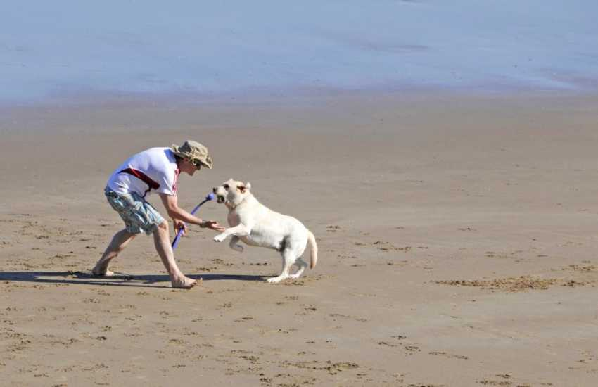 Having fun together - most cottages welcome your dog