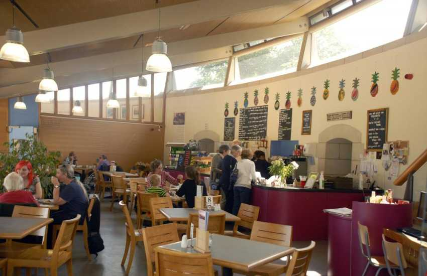 Oriel y Parc, St. Davids - activities and events take place throughout the year, do visit the excellent cafe too