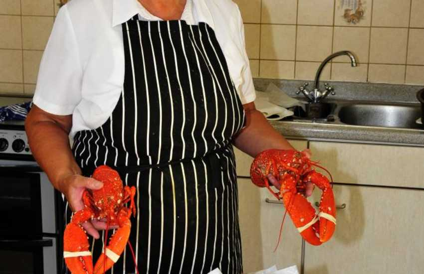 Fresh lobsters dressed and prepared ready for you to eat are available in Upper Solva near Bay View Stores