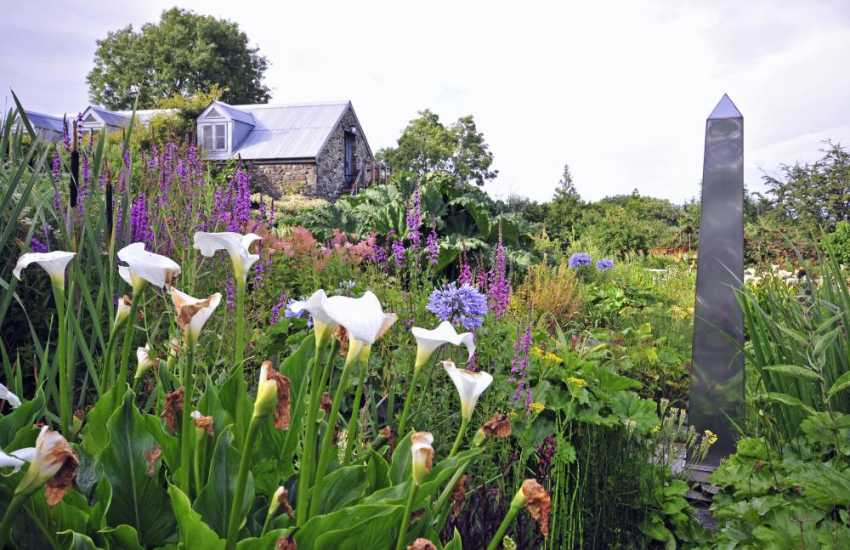 The beautiful gardens at Llanychaer between Fishguard and Dinas are amazing - 6 acres including a bog garden and intriguing sculptures