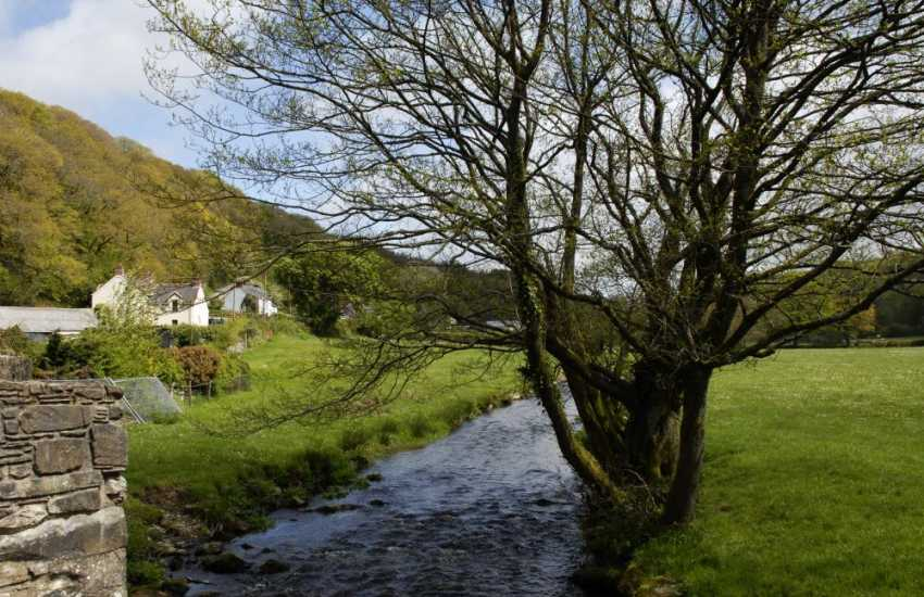 The Gwaun River running through the Gwaun valley rich in flora and fauna.