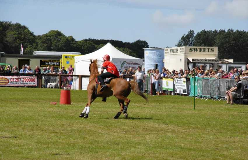 Enjoy the excitement and the atmosphere at a local agricultural show