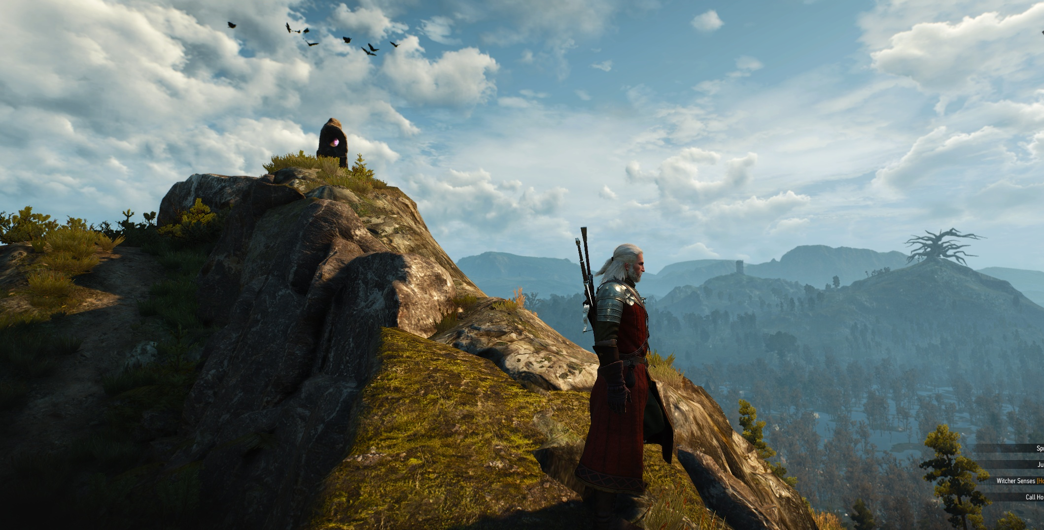 Geralt surveys a landscape in The Witcher 3, where a huge tree is visible on a distant hill