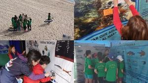 Tallers infantils de pesca sostenible i residus al mar