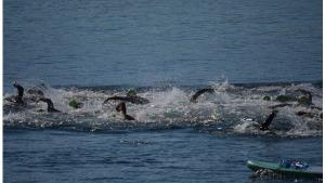 L'Escala obre l'Open Water Tour
