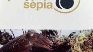Excel·lents resultats de la primera edició del Projecte Sèpia a l'Escala