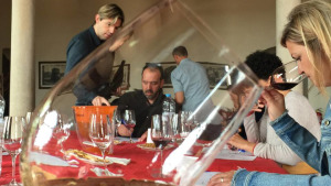 El tast a cegues escalfa motors per l'11a fira Arrels del vi
