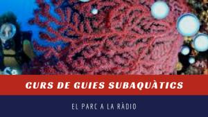 El Parc a la Ràdio - Curs guies subaquàtics
