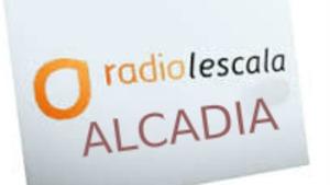 Alcaldia 08/02/17