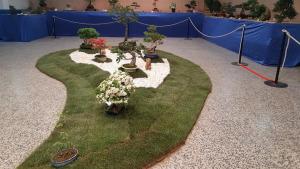 Exposició de bonsais del CER