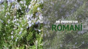 Dr. Productes - Romaní