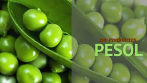 Dr. Productes - Pesol