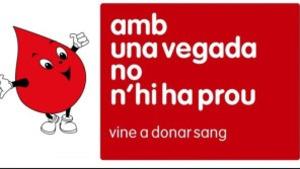 Segona donació de sang al CER