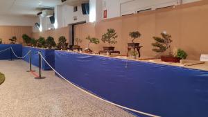 29a Exposició de Flors del CER
