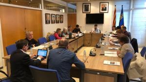 El ple aprova la cessió de terrenys per ampliar el CAP