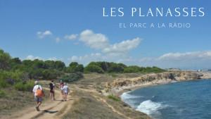 El Parc a la Ràdio - Les Planasses