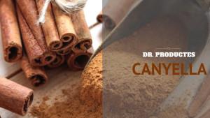 Dr. Productes - Canyella
