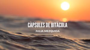 Càpsules de Bitàcola - Anna Roig