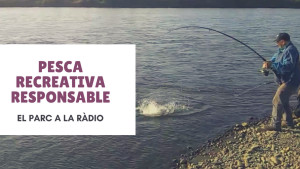 El Parc a la Ràdio - Pesca recreativa responsable