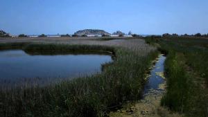El Parc a la Ràdio - El Baix Ter té zones prioritàries per la conservació
