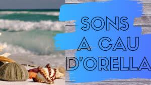 Sons A Cau d'Orella 19/01/20