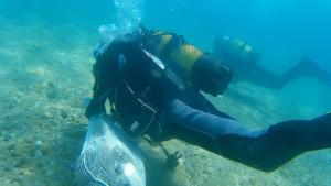 Neteja subaquàtica de deixalles