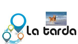 La Tarda - La platja per gossos