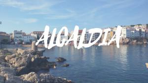 Alcaldia 28/06/17
