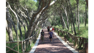 300 mil euros per millorar el passeig d'Empúries
