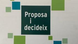 Votacions dels pressupostos participatius