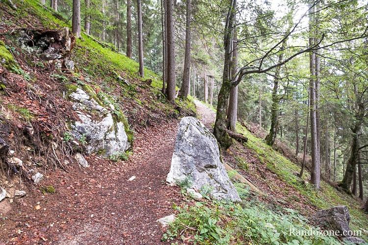Randonnée au Gehrenspitze : montée dans la forêt