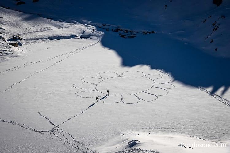 Fleur dans la neige sur le lac de la Glère