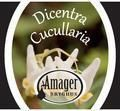 Amager Dicentra Cucullaria  - Sour Red/Brown