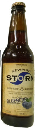 Newport Storm Rhode Island Blueberry - Fruit Beer