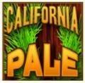 Union Ale California Pale