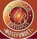 B�llings� Mosefundet
