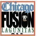 Lagunitas Chicago-Style Fusion Ale - American Pale Ale