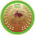 BIEs Bryglab India Pilzner