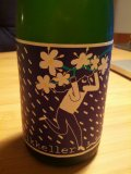 Mikkeller SpontanDoubleElderflower - Lambic Style - Fruit