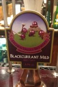 Itchen Valley Blackcurrant Mild - Mild Ale