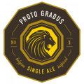 Penrose Proto Gradus