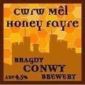 Conwy Honey Fayre / Cwrw M�l