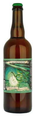 Jolly Pumpkin Luciernaga  (The Firefly)