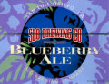 SLO Blueberry Ale