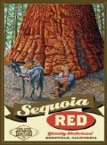 Kern River Sequoia Red