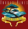Oggis Torrey Pines IPA